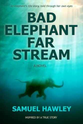 9780992078607: Bad Elephant Far Stream