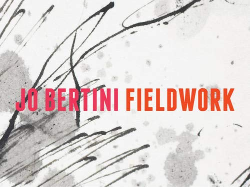 Jo Bertini: Fieldwork: Davidson, Robyn (short intro) & Prue Gibson (essay): Jo Bertini (...