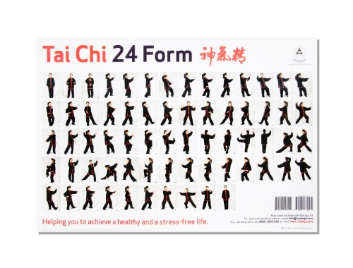 9780992630805: Tai Chi in 24 Forms