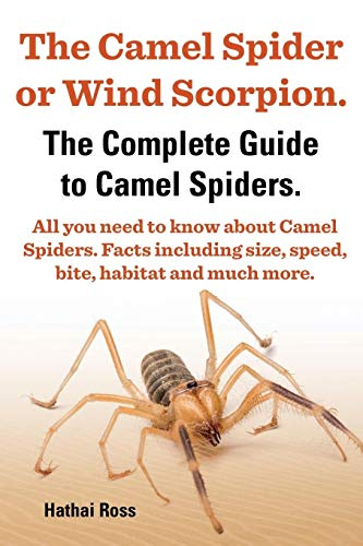 9780992676728: The Camel Spider or Wind Scorpion. the Complete Guide to Camel Spiders. All You Need to Know about Camel Spiders. Facts Including Size, Speed, Bite an