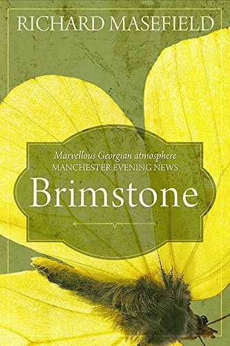 9780992852030: Brimstone