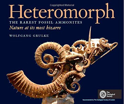9780992974008: Heteromorph: The Rarest Fossil Ammonites: Nature at its Most Bizarre