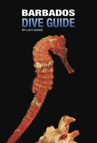 9780993391200: Barbados Dive Guide: No.2