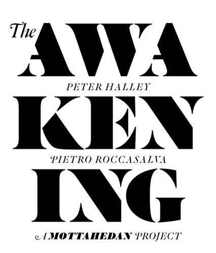 Awakening: A Mottahedan Project: Halley, Peter; Pietro Roccasalva