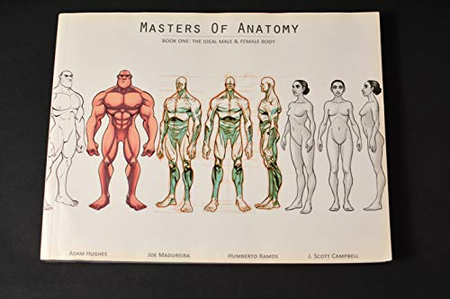 9780993792908: Masters of Anatomy Book One: The Ideal Male & Female Body