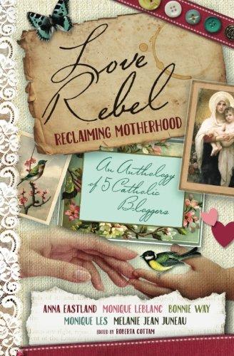 9780994081537: Love Rebel: Reclaiming Motherhood