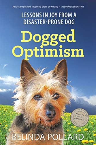 9780994209832: Dogged Optimism: Lessons in Joy from a Disaster-Prone Dog
