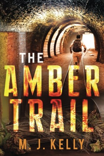 9780994326904: The Amber Trail