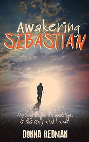 9780994338303: Awakening Sebastian