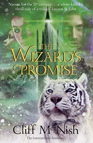 9780995582149: The Wizard's Promise (The Doomspell Trilogy)