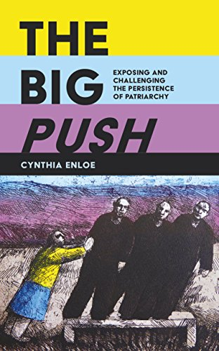 9780995590007: The Big Push: Exposing and Challenging the Persistence of Patriarchy