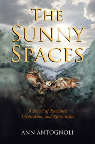 9780996024112: The Sunny Spaces: A Novel of Romance, Inspiration, and Restoration