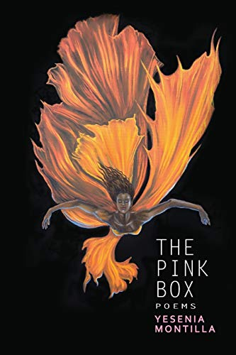 The Pink Box (Willow Books Emerging Poets & Writers Series): Yesenia Montilla