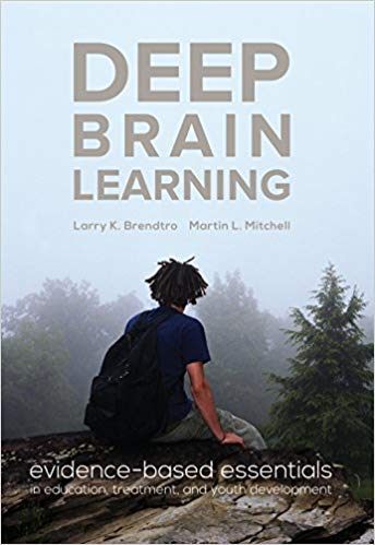 9780996159104: Deep Brain Learning: evidence-based essentials in education, treatment, and youth development