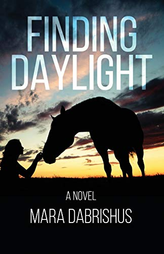 9780996187237: Finding Daylight