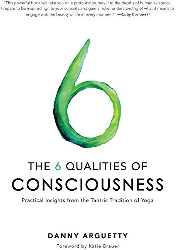 9780996299343: The 6 Qualities of Consciousness: Practical Insights from the Tantric Tradition of Yoga