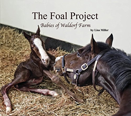 9780996336901: The Foal Project, Babies of Waldorf Farm