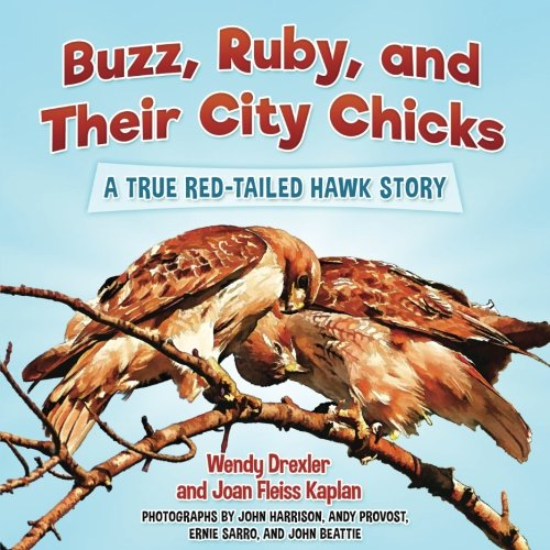 Buzz, Ruby, and Their City Chicks: A