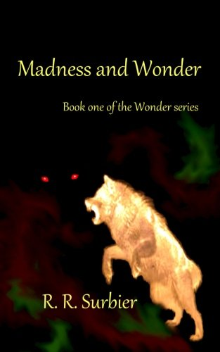 9780996464307: Madness and Wonder: Book one of the Wonder series (Volume 1)