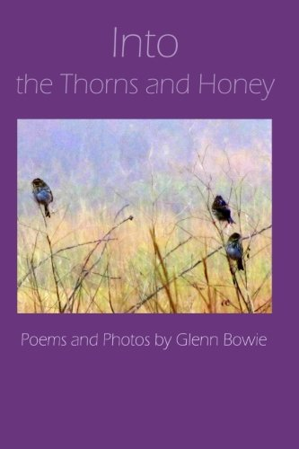 Into the Thorns and Honey: Bowie, Glenn