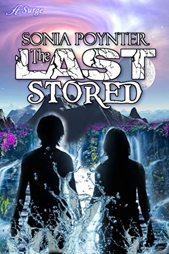 9780996682787: The Last Stored