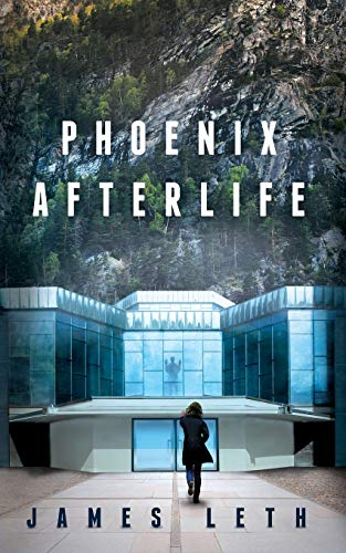 9780996848008: Phoenix Afterlife