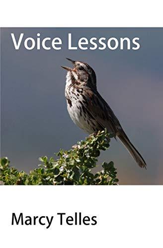 9780996924009: Voice Lessons