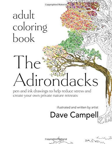 9780997362312: Adult Coloring Book: The Adirondacks: pen and ink drawings to help reduce stress and create your own private nature retreats