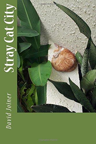 9780997715514: Stray Cat City