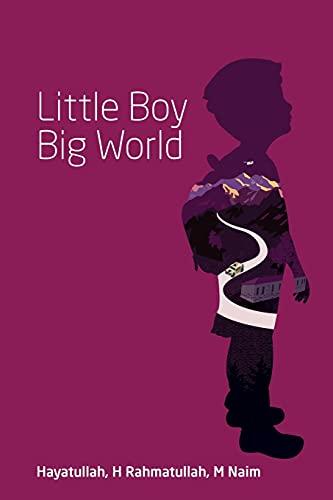 Little Boy Big World (Paperback or Softback)