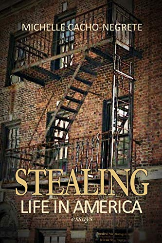 Stealing: Life In America: A Collection of Essays: Michelle Cacho-Negrete