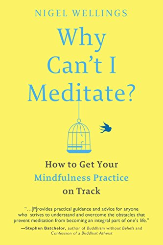 9781101983270: Why Can't I Meditate?: How to Get Your Mindfulness Practice on Track