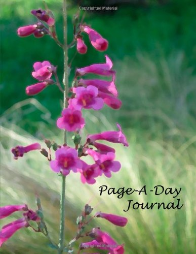 9781105230073: Page-A-Day Journal