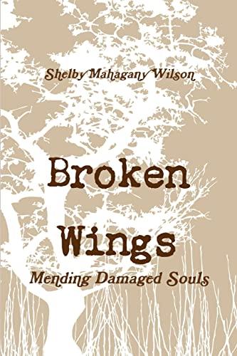 9781105659188: Broken wings, mending damaged souls