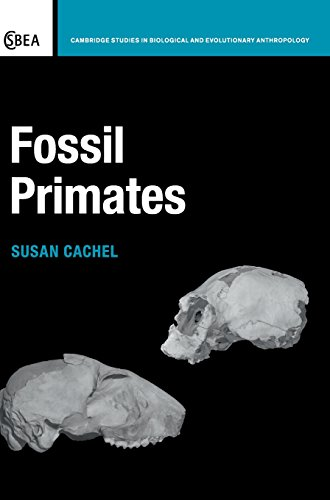 9781107005303: Fossil Primates (Cambridge Studies in Biological and Evolutionary Anthropology)