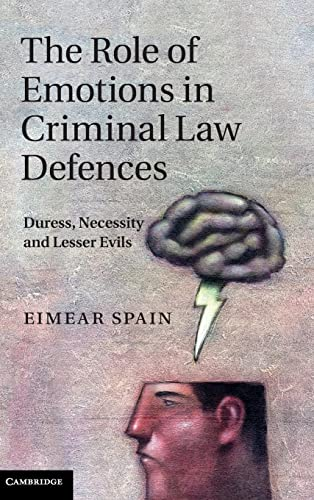 The Role of Emotions in Criminal Law Defences: Duress, Necessity and Lesser Evils (Hardcover): ...