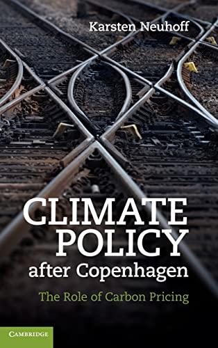 Climate Policy after Copenhagen Hardback: Neuhoff