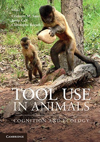 9781107011199: Tool Use in Animals: Cognition and Ecology
