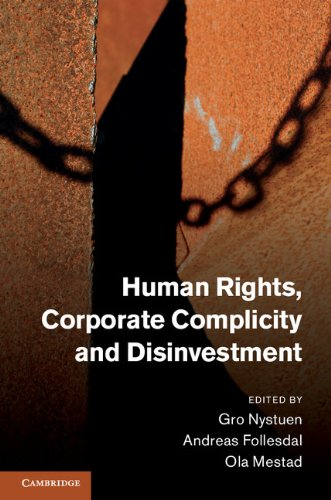 9781107012851: Human Rights, Corporate Complicity and Disinvestment Hardback