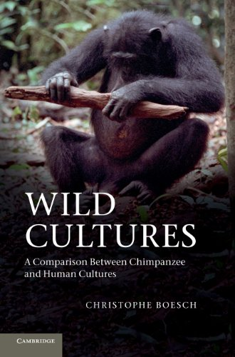 9781107025370: Wild Cultures: A Comparison between Chimpanzee and Human Cultures