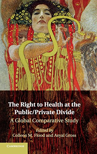 9781107038301: The Right to Health at the Public/Private Divide: A Global Comparative Study