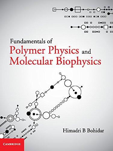 9781107058705: Fundamentals of Polymer Physics and Molecular Biophysics