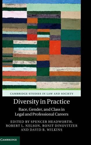 9781107123656: Diversity in Practice: Race, Gender, and Class in Legal and Professional Careers (Cambridge Studies in Law and Society)