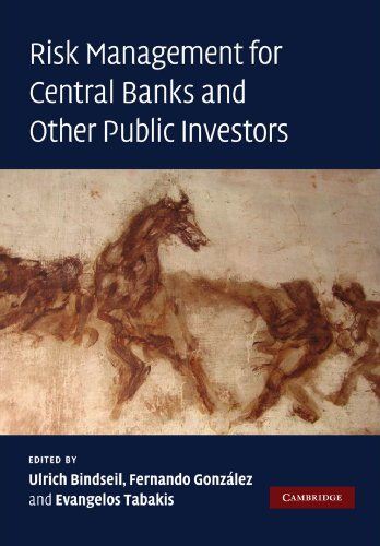 9781107403567: Risk Management for Central Banks and Other Public Investors