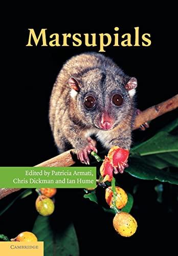 9781107406070: Marsupials