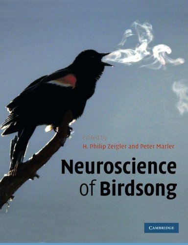 9781107411579: Neuroscience of Birdsong