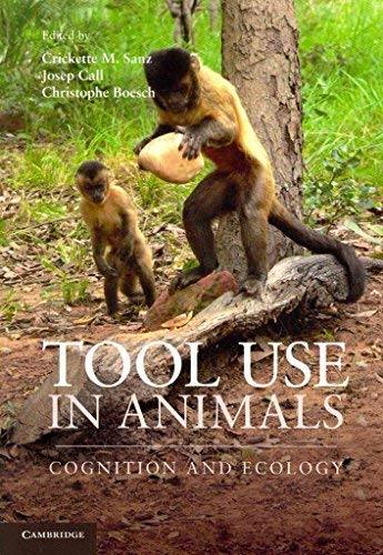 9781107424555: Tool Use in Animals: Cognition and Ecology