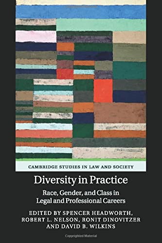 9781107559196: Diversity in Practice: Race, Gender, and Class in Legal and Professional Careers (Cambridge Studies in Law and Society)