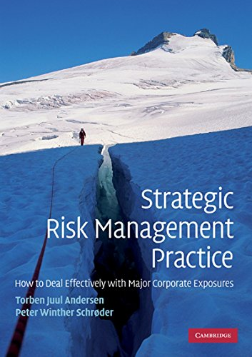 9781107601901: Strategic Risk Management Practice: How to Deal Effectively with Major Corporate Exposures