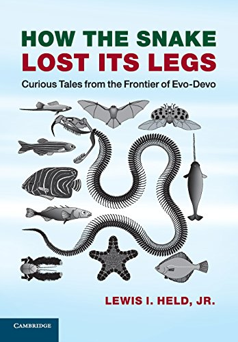9781107621398: How the Snake Lost its Legs: Curious Tales From The Frontier Of Evo-Devo